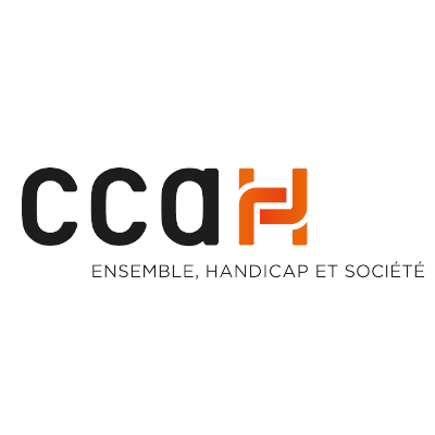 CCAH, Comité national Coordination Action Handicap